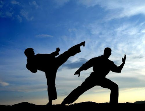 Best food for martial artists